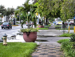 Street view and landscaping