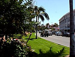 Street in downtown Coronado California
